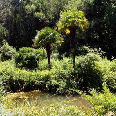 Райский уголок в парке