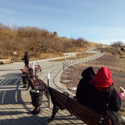 Видовые площадки, дорожки в монастыре