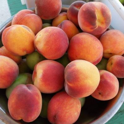Вкуснейшие крымские персики