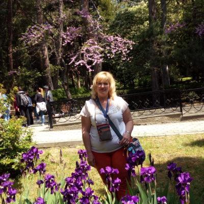 Среди ирисов в Гурзуфском парке