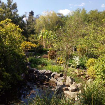 В парке Монтедор