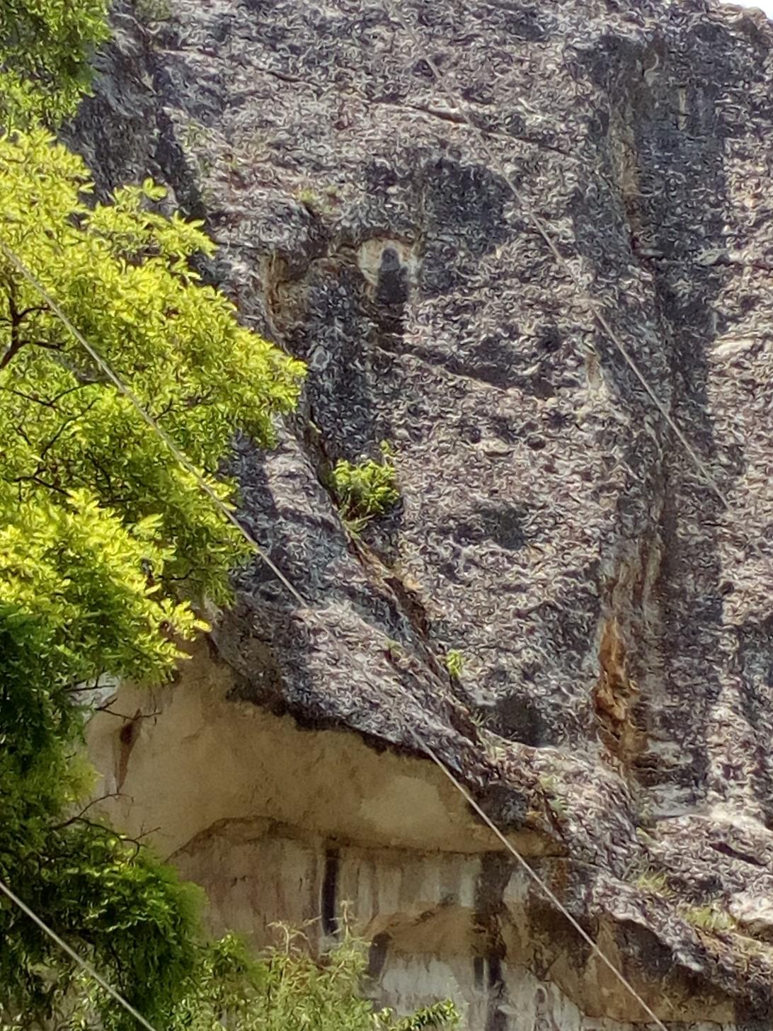 Явление образа Богородицы на скале в наши дни