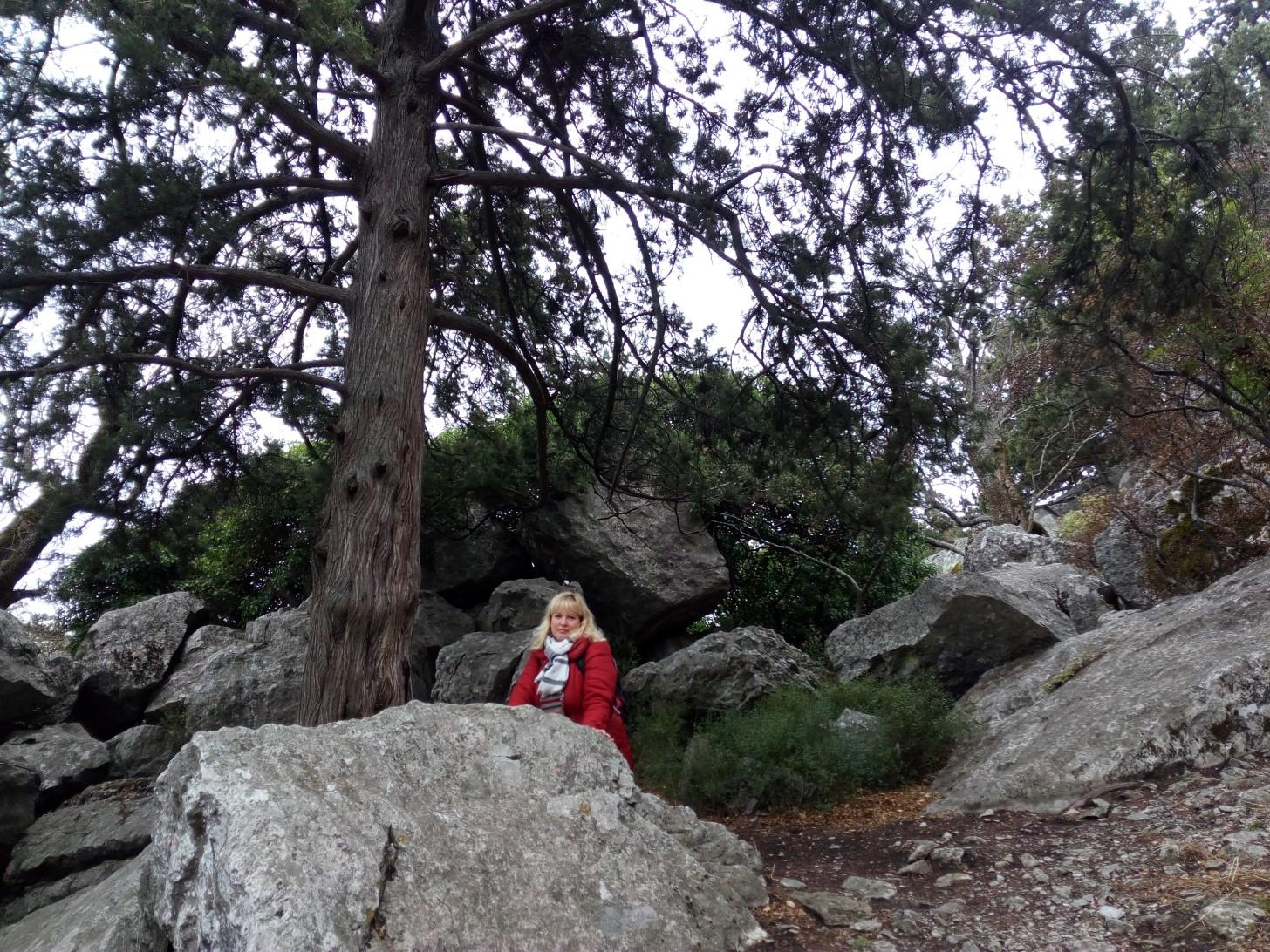 На Крестовой горе